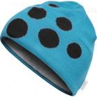 Čepice Craft BIG LOGO modrá