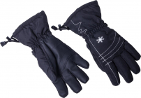 Sjezdové rukavice Blizzard Viva Echo 2017/18 black/silver