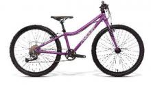 Dětské jízdní kolo Amulet 24 Tomcat, purple/silver 2022